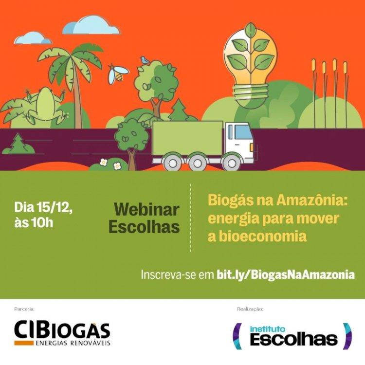 Biogás na Amazônia: energia para mover a bioeconomia