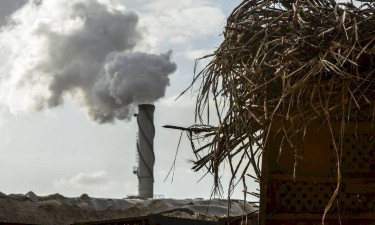 Mais um lance no duelo da descarbonização da matriz energética brasileira