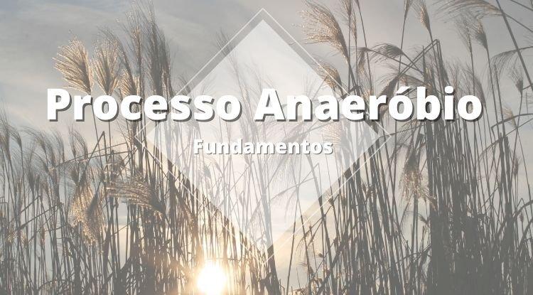 Fundamentos do Processo de Digestão Anaeróbia