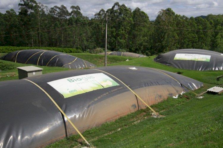 Cooperação pode fomentar o biogás e o biometano