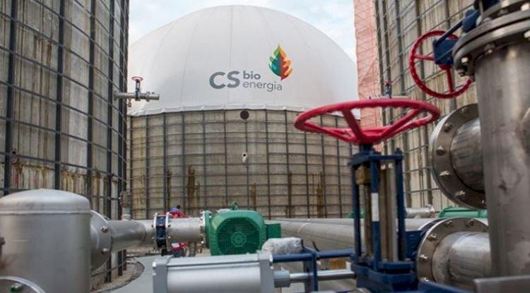 Canal Energia: Biogás - a hora é agora