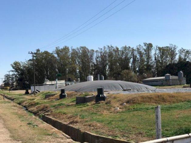 Biogás na Argentina: transformando um problema ambiental em uma solução