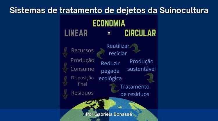 O manejo de dejetos da suinocultura e a Economia Circular