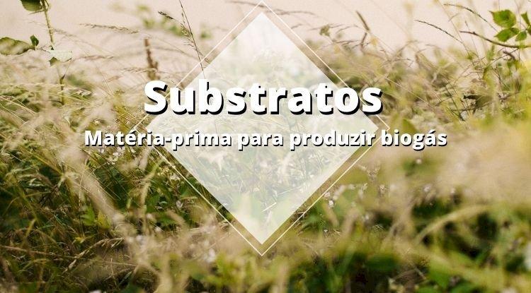 Substrato, a matéria-prima para produzir biogás