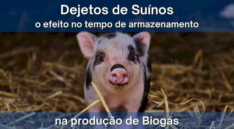 Pesquisadores avaliam o efeitos do tempo de armazenamento de esterco de suíno na produção de biogás