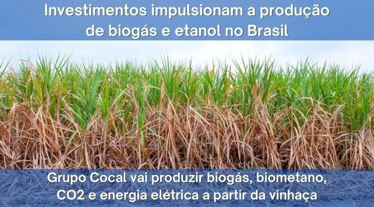 Para impulsionar a produção de biogás e etanol no Brasil, International Finance Corporation investe US$ 70 milhões