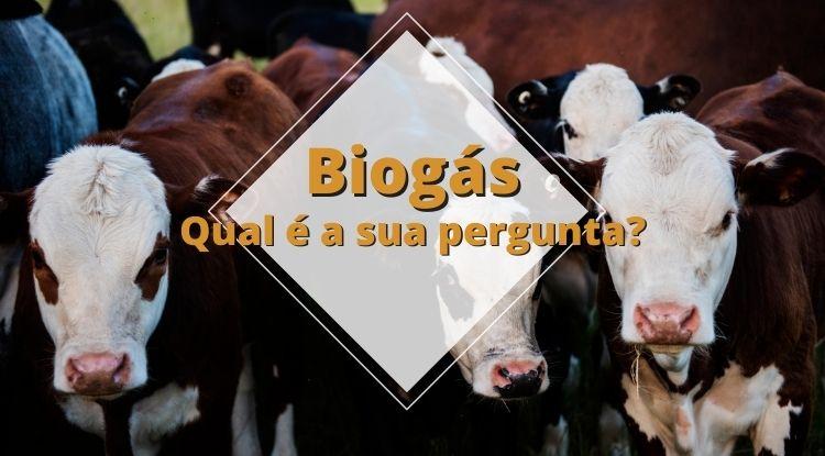 Pergunte ao Portal Energia e Biogás